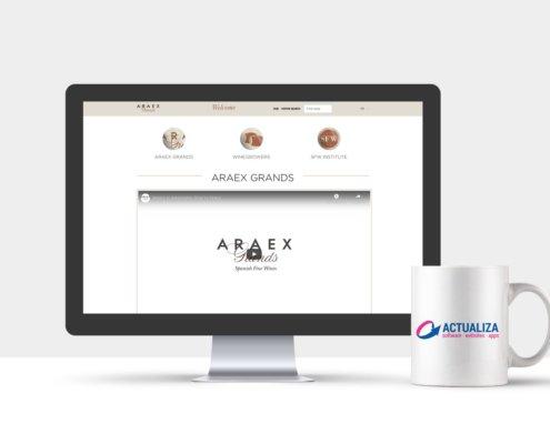 Araex Hub